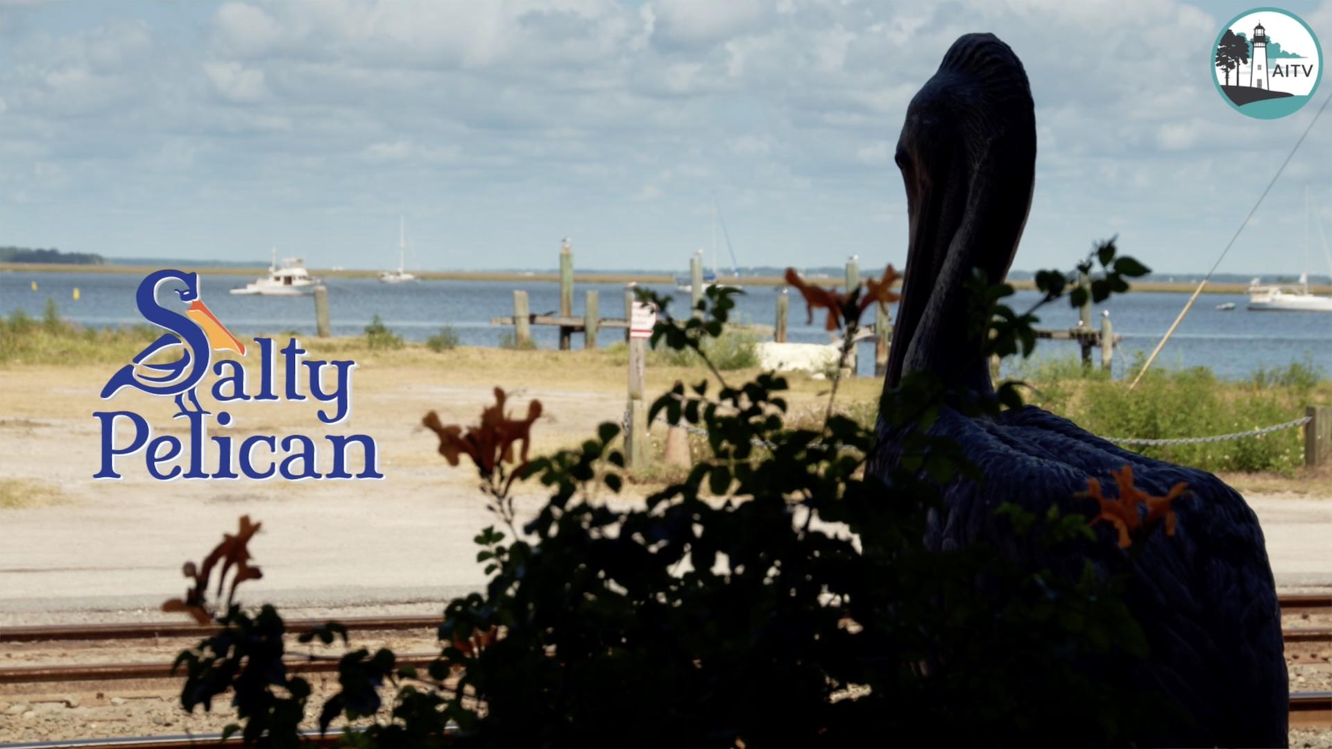 salty pelican thumbnail